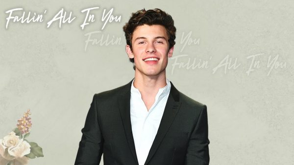 Shawn Mendes - Fallin' All In You